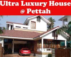 pettaha-low-size-banner