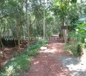 40 Cents Land for Sale at Balaramapuram Trivandrum Kerala111