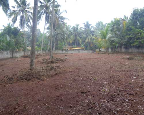 20 cents land for sale near balaramapuram trivandrum kerala for Land for sale in kerala