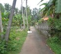 21 Cents Residential Land for Sale at Kachani Trivandrum Kerala1