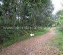 71 Cents Land for Sale near Thonnakkal Trivandrum Kerala11