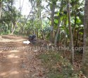 50 Cents Land for Sale at Neyyattinkara Trivandrum Kerala001