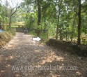 17 Cents Residential Land for Sale in Edava Varkala Trivandrum Kerala1