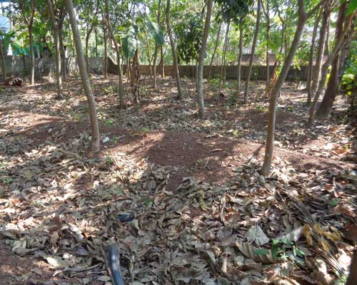 10 cents land for sale at kottiyam kollam kerala for Land for sale in kerala