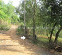 Above 1 Acre Land for Sale at Balaramapuram Trivandrum Kerala12