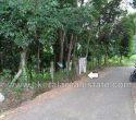 75 Cents Rubber Plantation for Sale at Vilappilsala Peyad Trivandrum Kerala1