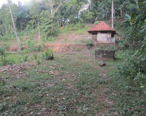 Above 1 acres land for sale at thiruvalla pathanamthitta for Land for sale in kerala