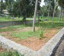 House Plots for Sale at Njandoorkonam Sreekaryam Trivandrum Kerala1