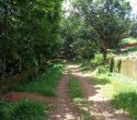 12 Acres Land For Sale at Njandoorkonam near Sreekaryam Trivandrum Kerala (5)