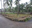Land plot for sale near Balaramapuram at Aralumoodu Trivandrum Kerala1 (1)