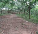 5 Acres Land for Sale near Pothencode Trivandrum Kerala1 (1)