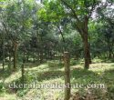 Rubber plantation for sale in Neyyattinkara Amaravila Perumkadavila Trivandrum Kerala