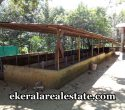 dairy-farm-and-brick-factory-sale-at-venjaramoodu-trivandrum-kerala-real-estate