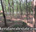 2.5-Acre-Rubber-Land-Sale-at-Parippally-Ezhippuram-Parippally-Real-Estate-Properties-Kerala-Land-Sale