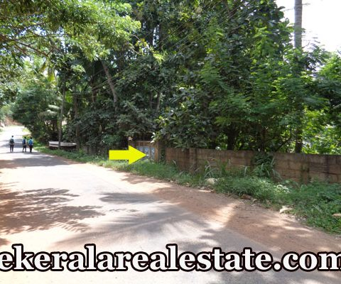 1-Acre-Land-Sale-at-Marayamuttom-Aruvippuram-Neyyattinkara-Trivandrum-Kerala-Neyyattinkara-Real-Estate-Kerala-Properties