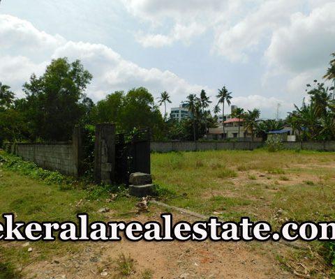 land-sale-at-Bhagat-Singh-road-Kannammoola