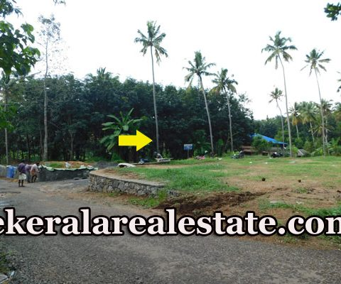House-Plots-For-Sale-near-St.-Thomas-College-Chanthavila-Kazhakuttom