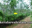 1.20-Acre-Rubber-Land-Sale-at-Nettarachira-Nedumangad