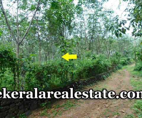 1.20-Acre-Rubber-Land-Sale-at-Nettarachira-Nedumangad