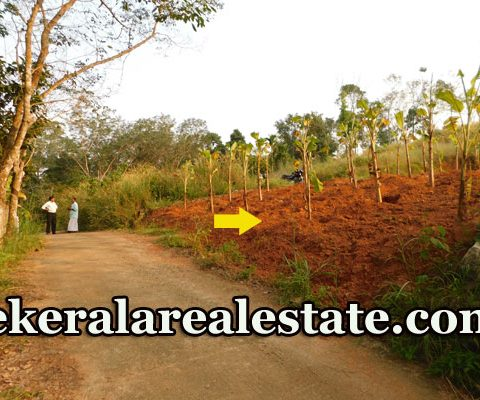 7.5-Cents-Residential-Land-Sale-at-Nannattukavu-Pothencode-Sreekariyam