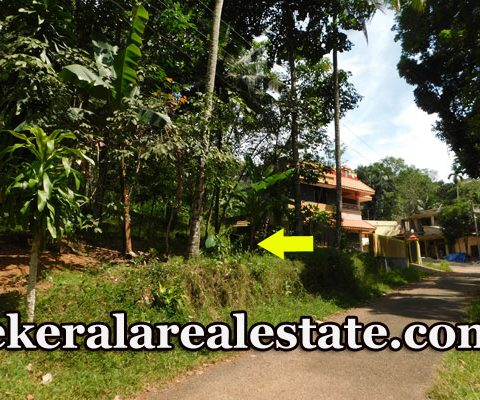 House-Plots-Price-Below-70000-For-Sale-at-Tholicode-Nedumangad