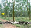 46-Cents-Rubber-Land-Price-1-Lakh-Per-Cent-Sale-Near-Mangalaikkal-Kattakada