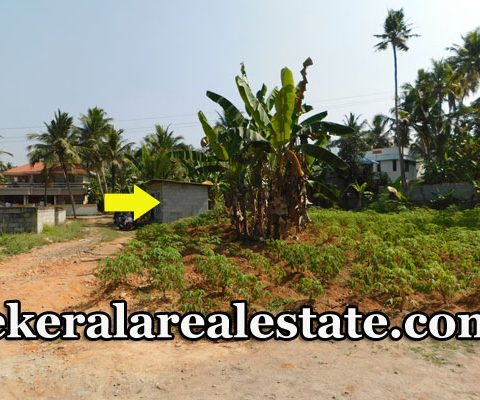 Land-Plots-Sale-at-Alakunnam-Peyad-Trivandrum-Price-Below-4.25-Lakhs-Per-Cent