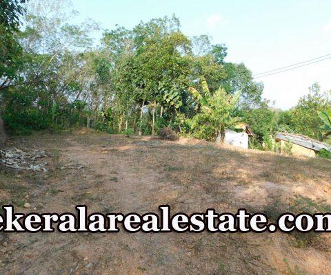 Land-For-Sale-at-palam-Junction-Venjaramoodu-Attingal-Vamanapuram