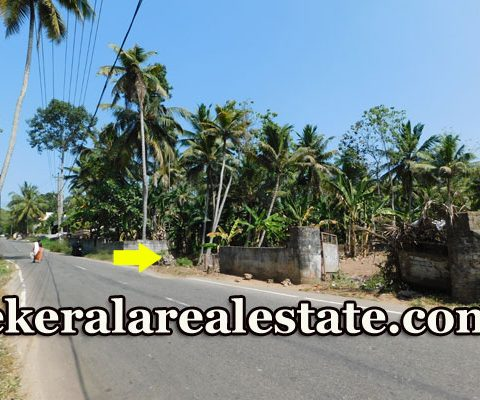 Main-Road-Frontage-House-Plots-Sale-at-Kollamkonam-Peyad-Trivandrum